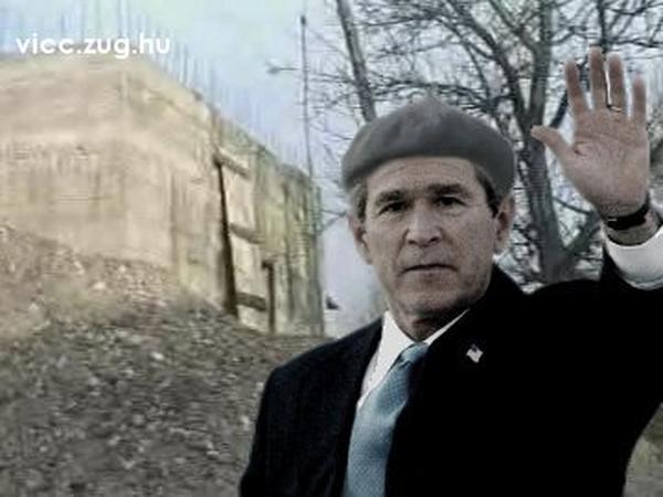 Bush Sándor