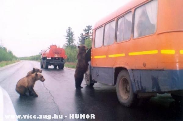 Közúti ellenõrzés