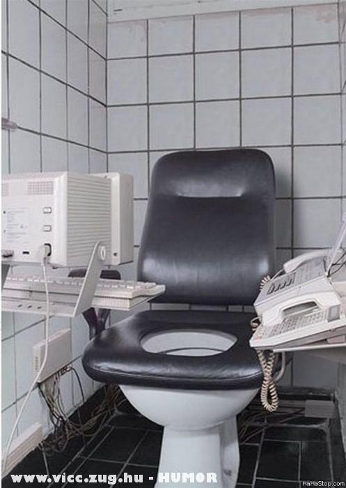 Buisness Toilet