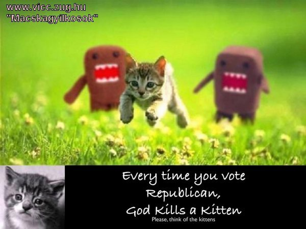 Macskagyilkossági kísérlet