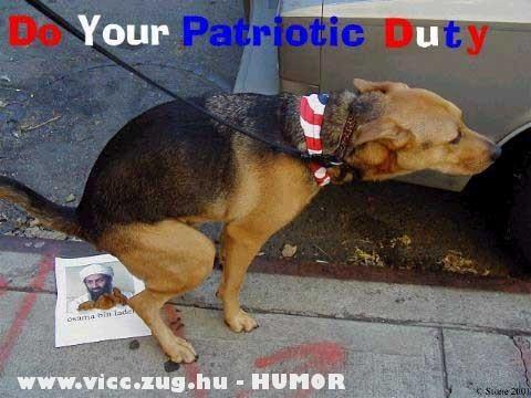 Egy igazi amerikai kutya