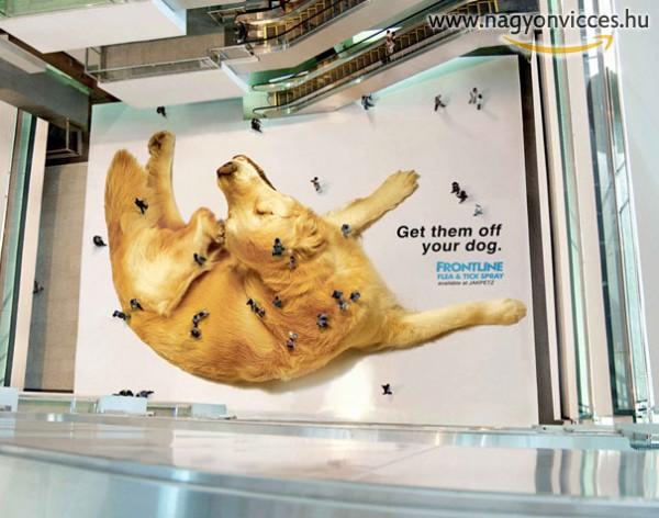 Hatalmas reklám a bolhasamponnak