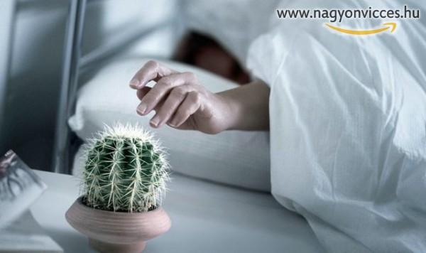 Kellemetlen reggeli ébresztő