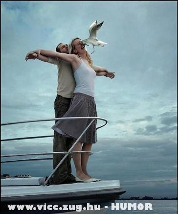 Titanic-sirály
