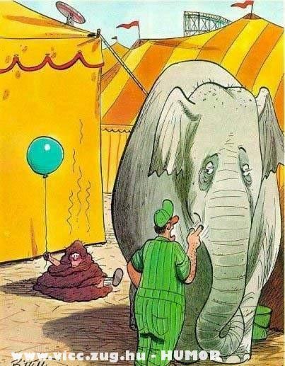 Még egy ilyen és repülsz Dumbo!