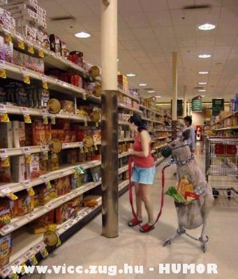 A vásárláshoz jól jön egy erszényes