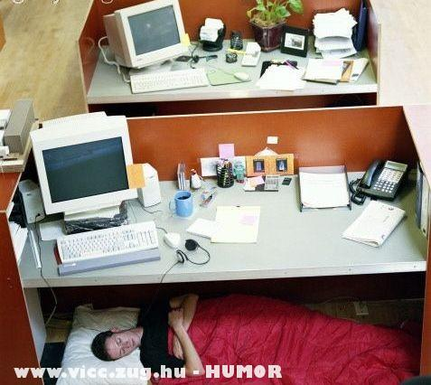 A hónap dolgozója