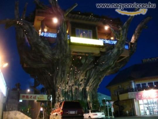 Fán lévő szálloda
