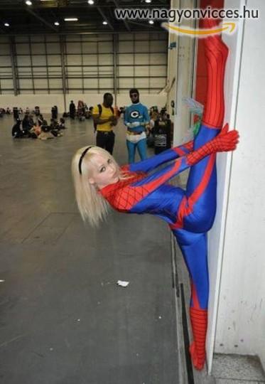 Hajlékony póklány