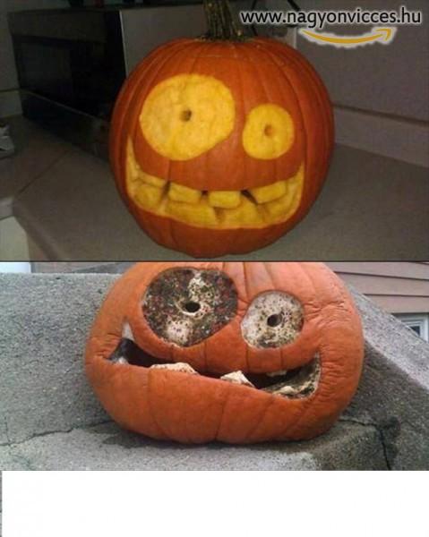 Halloweeni tök pár nap múlva