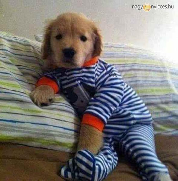 Pizsama idő