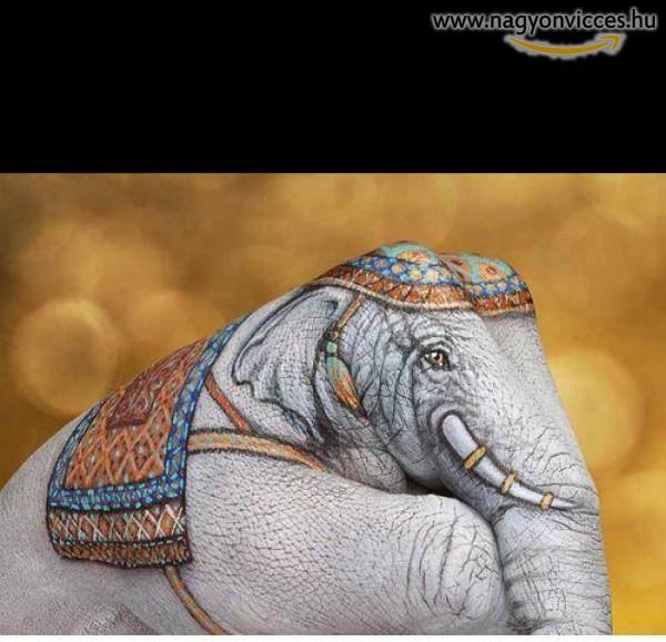 Dumbo kéz