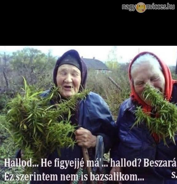 Kertész nagyi