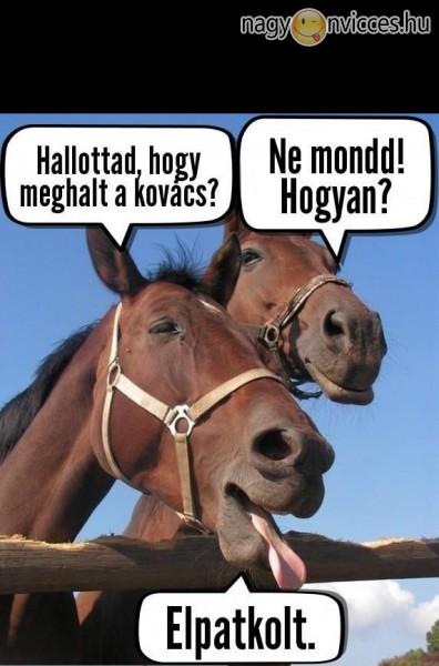 Kovács