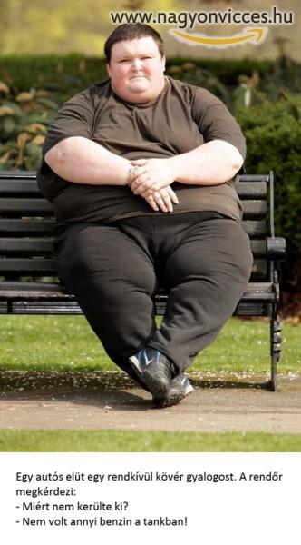 Kövér