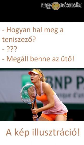 Teniszező