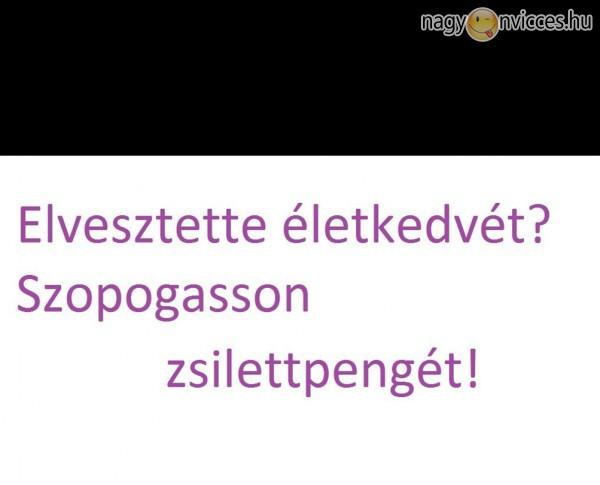 Zsilett