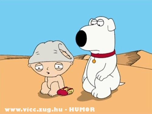 Stewie-t védi kutyi :D