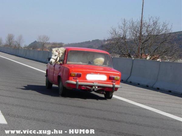 Szuper Ferrari