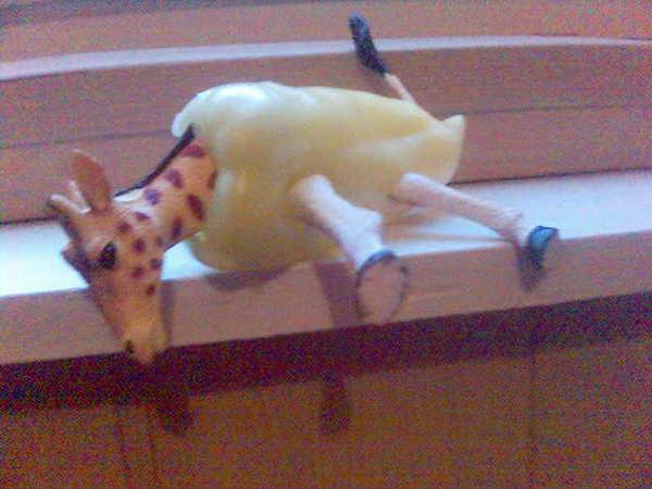 paprika zsiráf