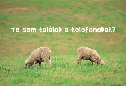 Telefon?