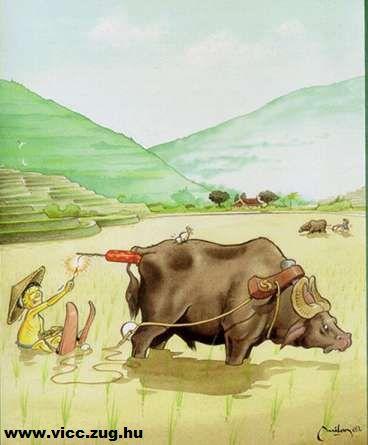 Kicsi mongol és a vizisí