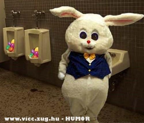 Meglepetés a húsvéti nyuszitól :D
