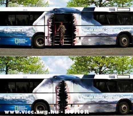 Szörny - busz