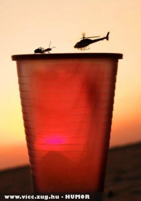 Helikopter a hangya ellen