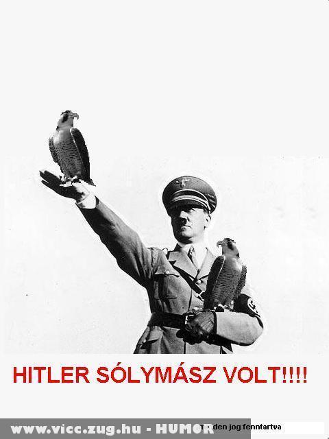 Hitler kéztartása-a valódi ok.