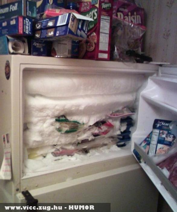 Megtelt a fagyasztó?
