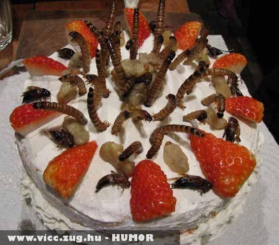 Kukacos torta