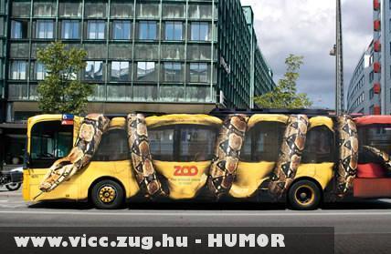 Kígyó szorításában a busz