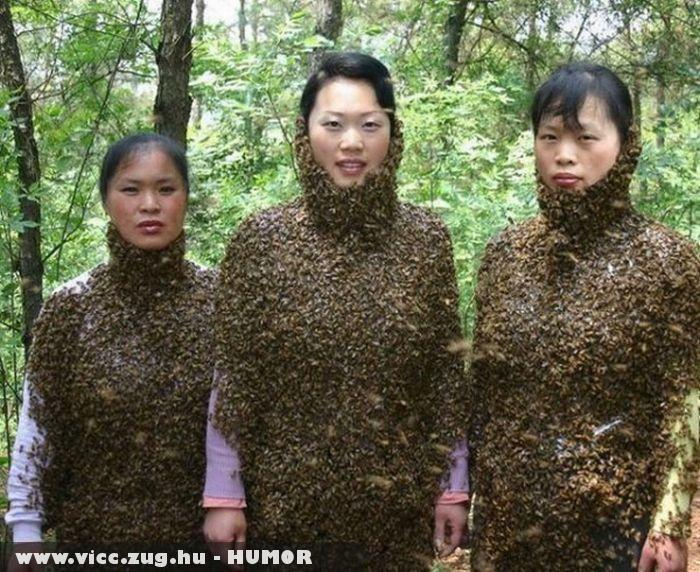 Õk nem félnek a méhcsípéstõl