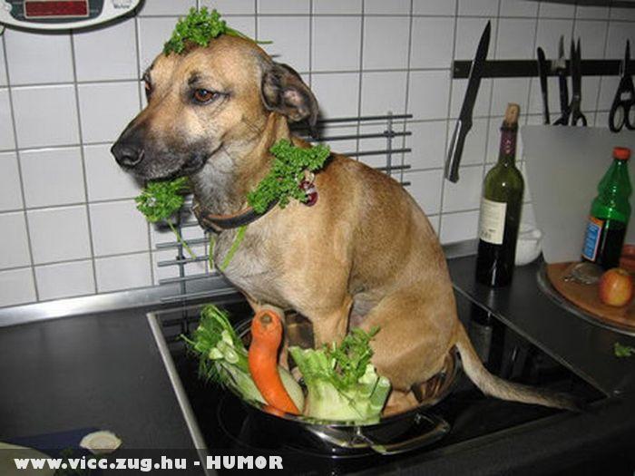 Készül az ebéd