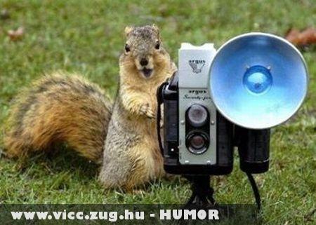 Mosolyogj mókuskám