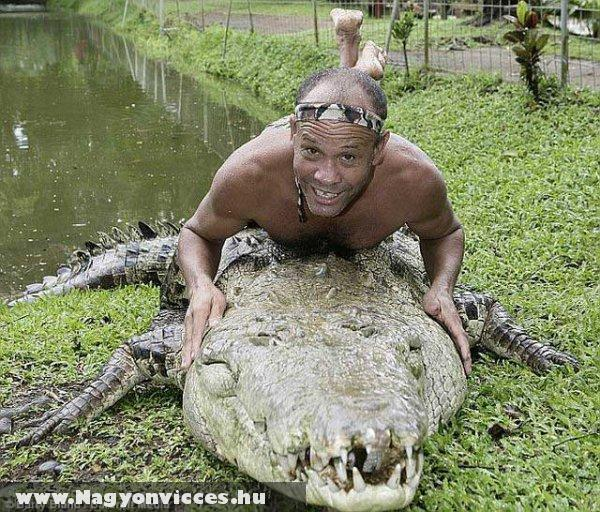 Krokodil Dandi