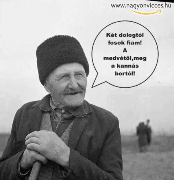 Az öreg megmondja