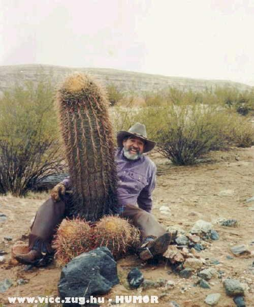 Fasza kaktusz :D