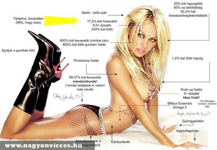 Pamela Anderson a XXI. század mûve