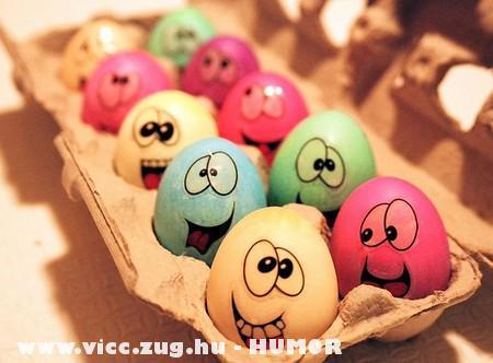 Humor Bio tojások