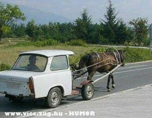 Gó trabi ló!