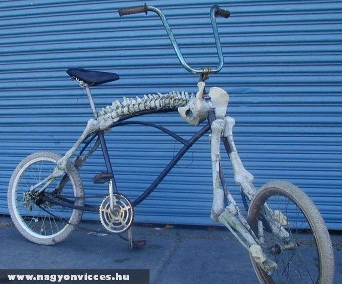Bicaj csont-vázzal