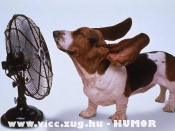 Ventilátor :