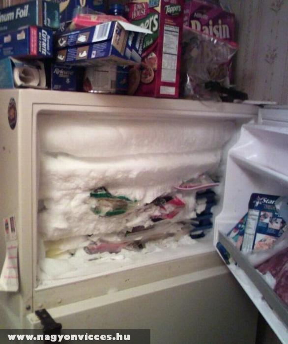 Kicsit jeges fagyasztó