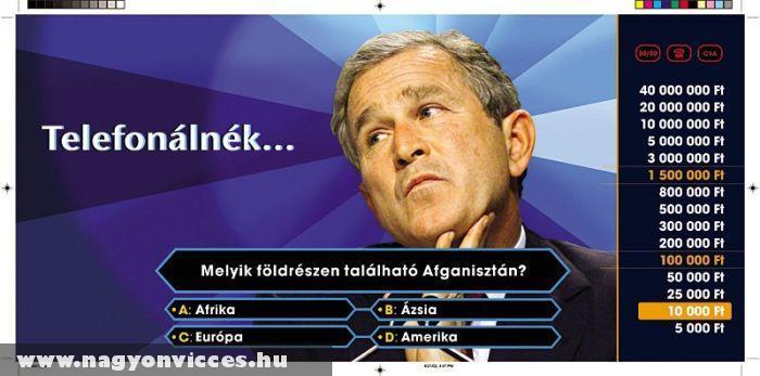 Bush játszik