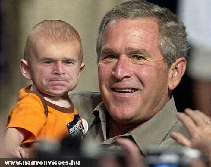A kicsi Bush