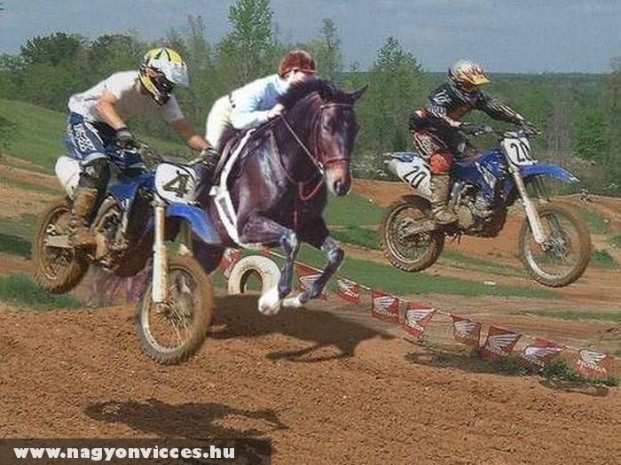 Ló vagy motorverseny