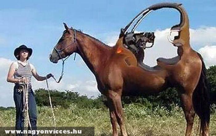 Ló a jövõbõl