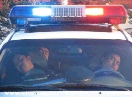 A rendorok mindig keményen dolgoznak